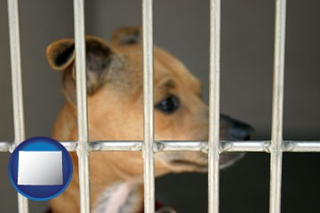 a chihuahua in an animal shelter cage - with Wyoming icon